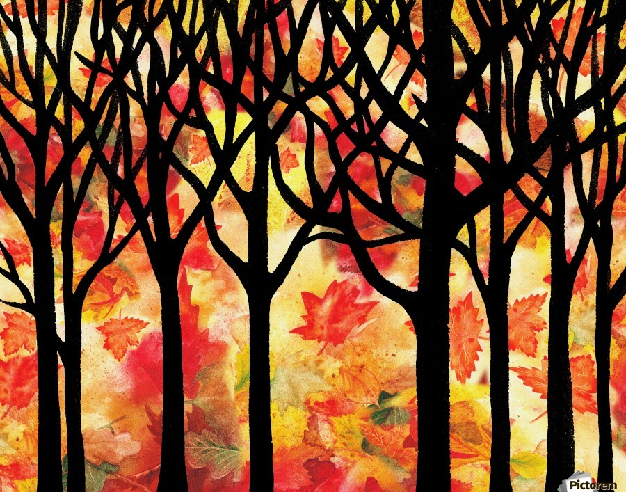 Fall In The Forest  Print