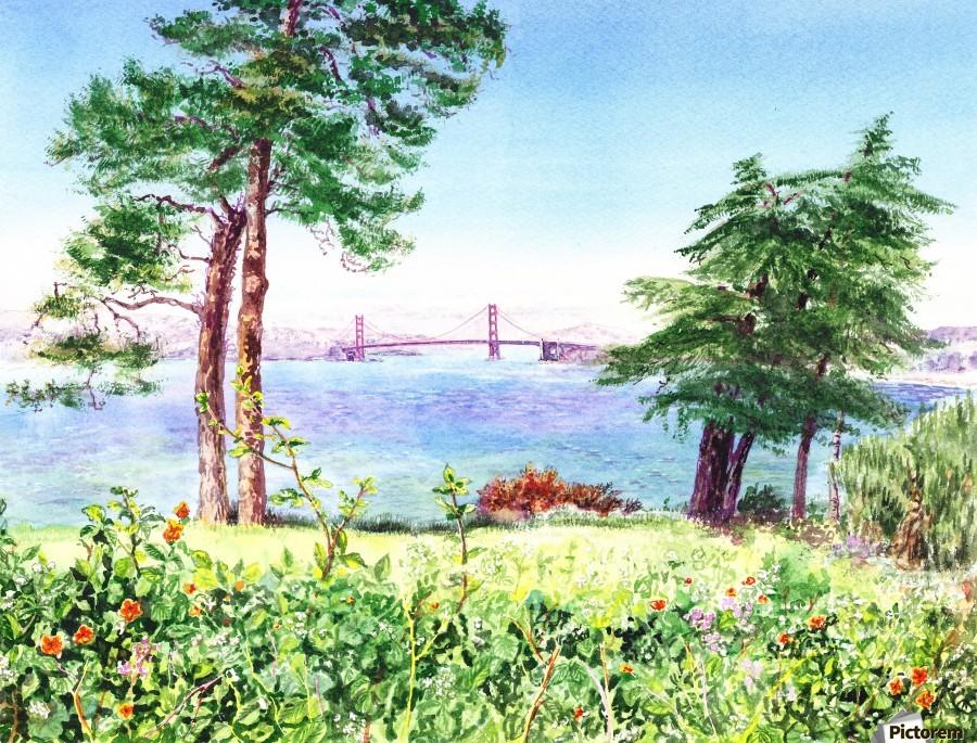 Golden Gate Bridge View From Lincoln Park San Francisco  Print