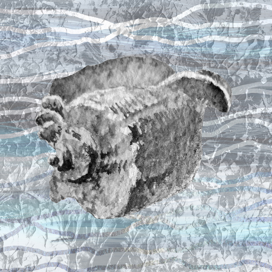 Silver Gray Seashell On Ocean Shore Waves And Rocks I  Print