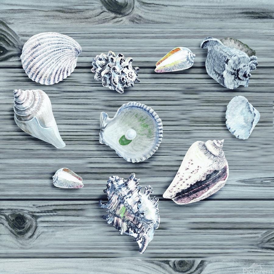 Silver Gray Seashells Heart On Ocean Shore Wooden Deck Beach House Art   Print