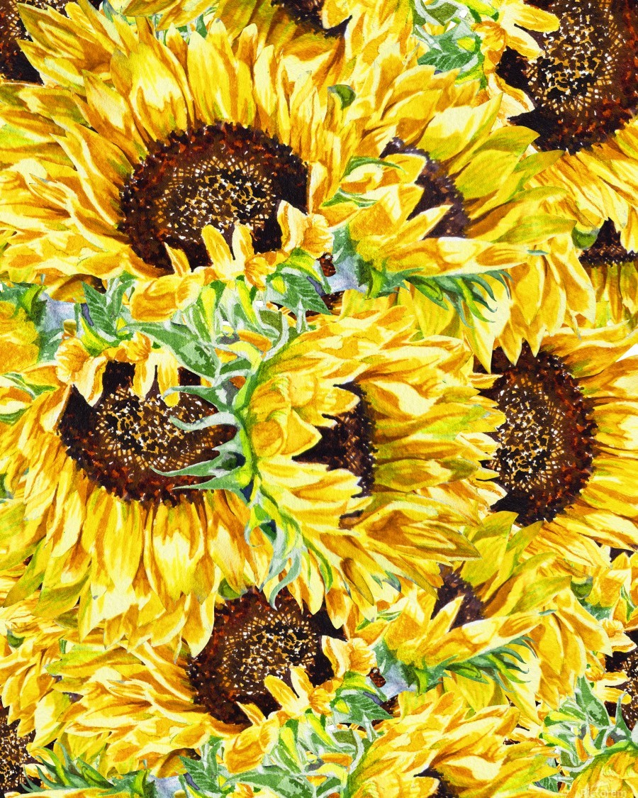 The Filed Of Watercolor Sunflowers Pattern  Print