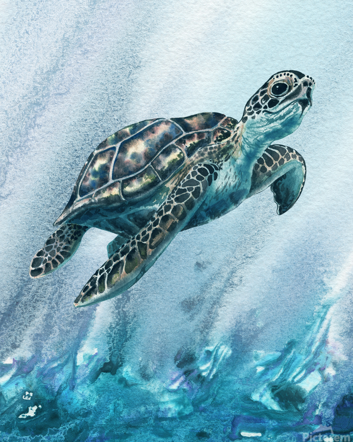 Watercolor Giant Turtle In Abstract Seaweed And Water XI  Print