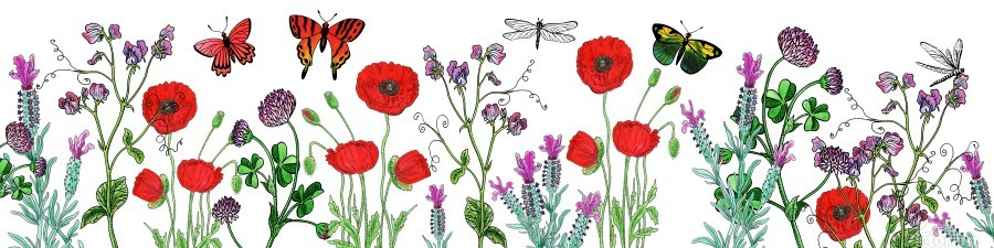 Wildflowers Field With Red Poppies Clover Lavender And Butterflies  Print