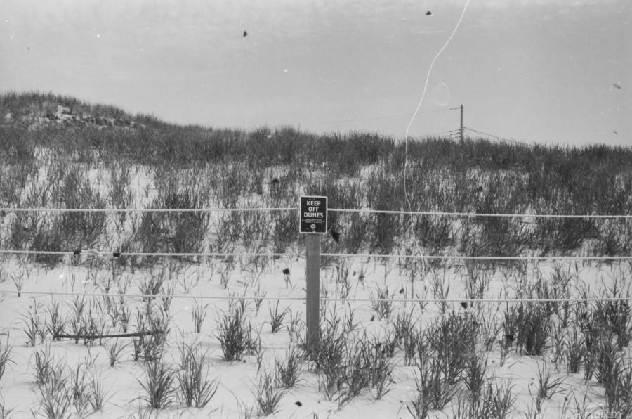 Keep off Dunes  Imprimer