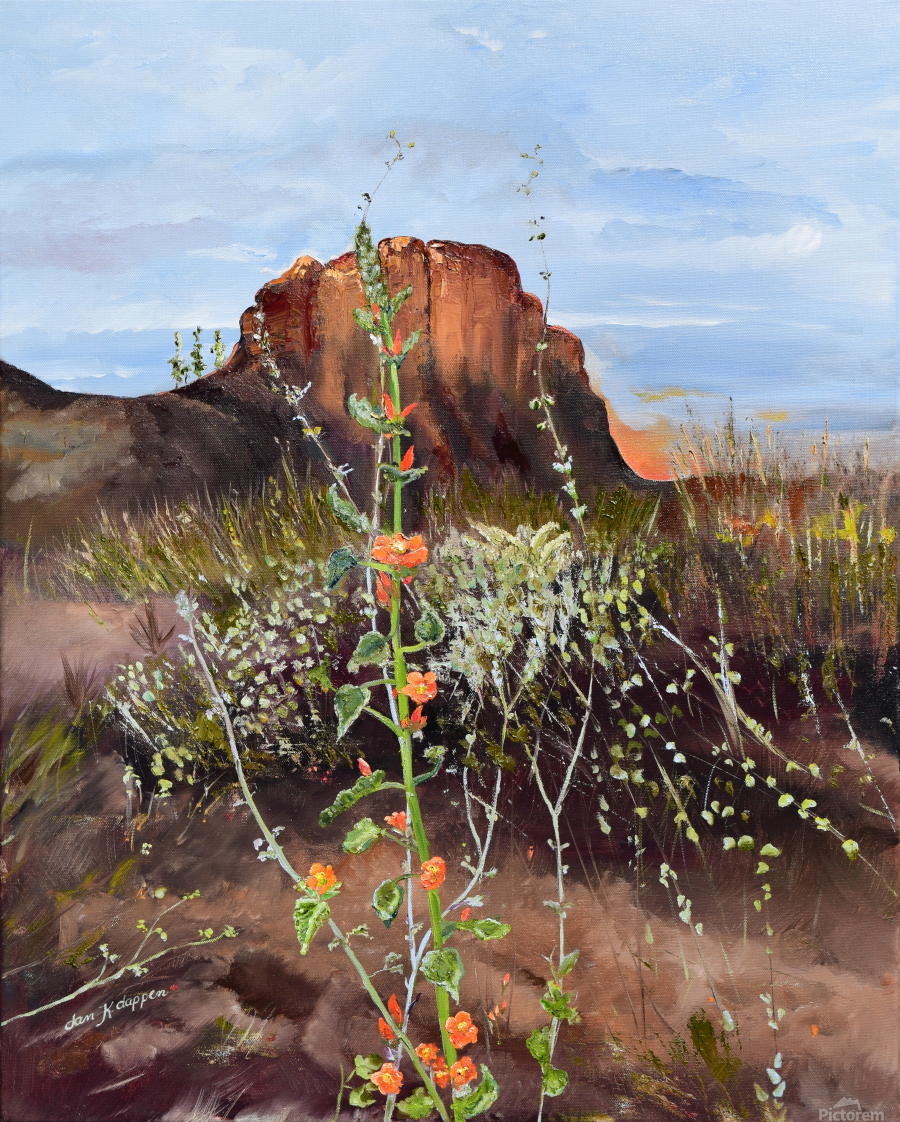 Arizona Desert Flowers Jan Kornegay Dappen Toile