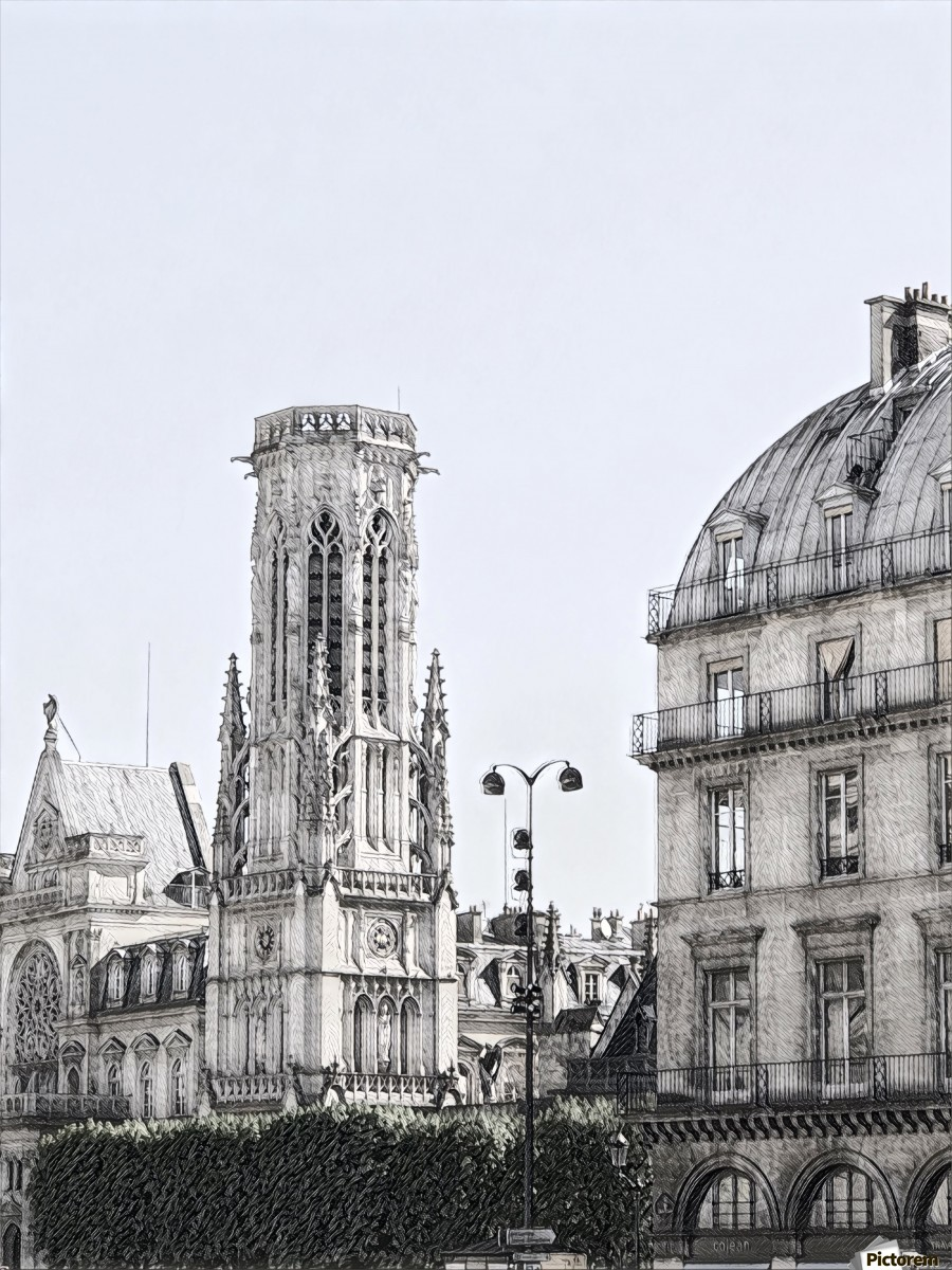 Notre Dame & Shade  Print