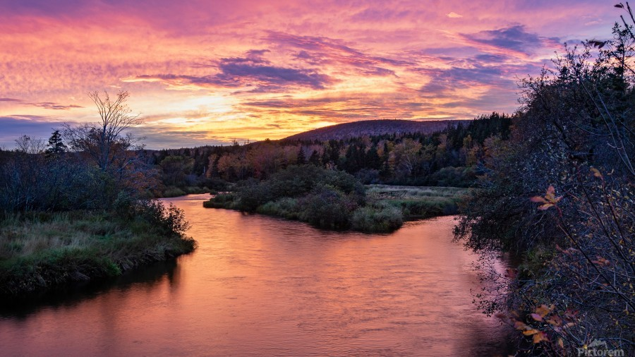 Early morning on the Margaree river   Print