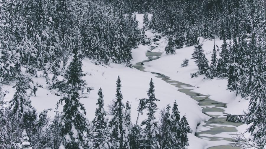 Frozen river.  Print