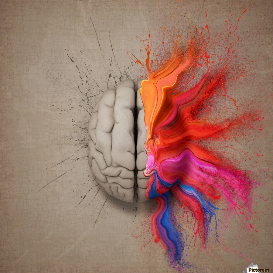 The Creative Brain  Print