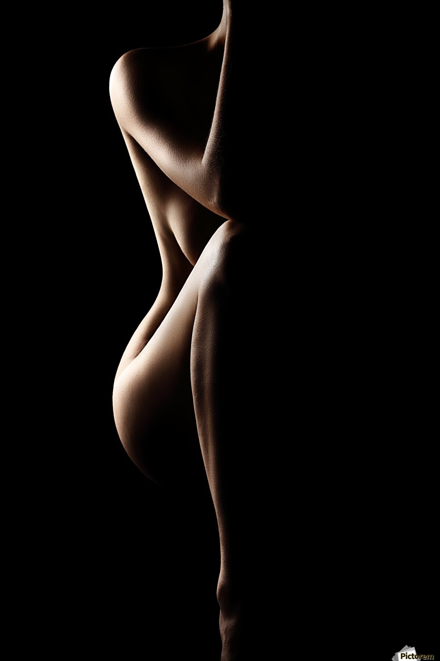 Silhouette of nude woman  Print