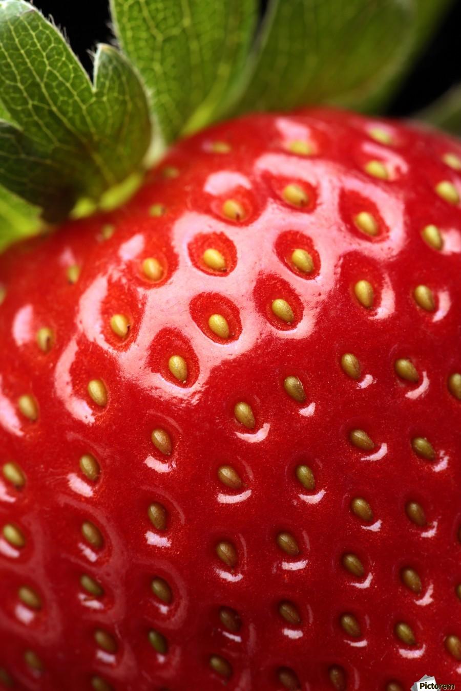 Fresh strawberry close-up  Print