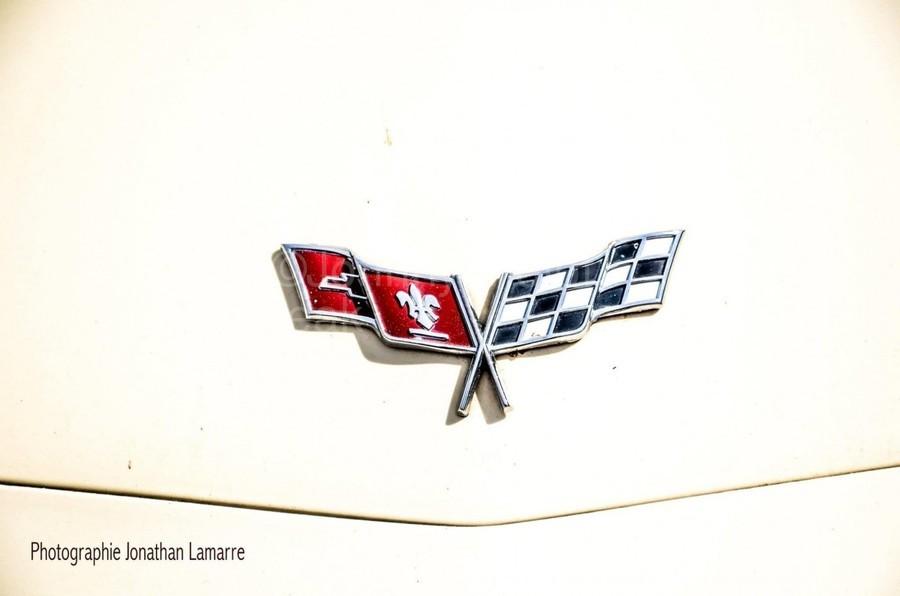 Corvette logo antique car   Print