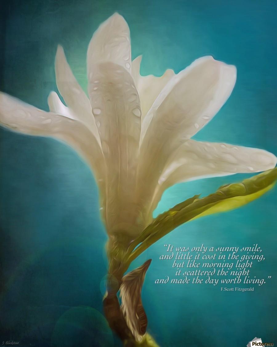 Like Morning Light - Flower Art by Jordan Blackstone  Print