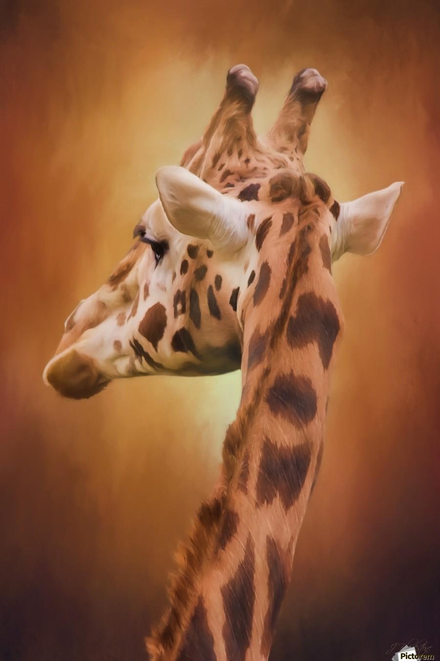 Rising Above - Giraffe Art  Print