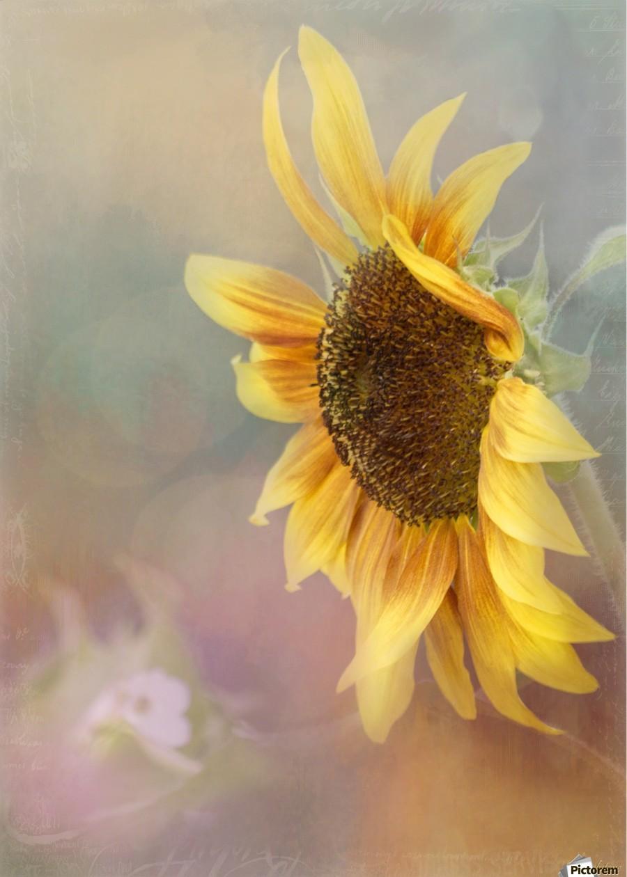 Be The Sunflower - Sunflower Art by Jordan Blackstone  Print