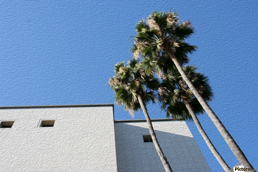 3 Palm Trees Next to Building  Print