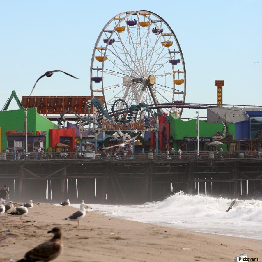 Sea Gulls & Santa Monica Pier  Print