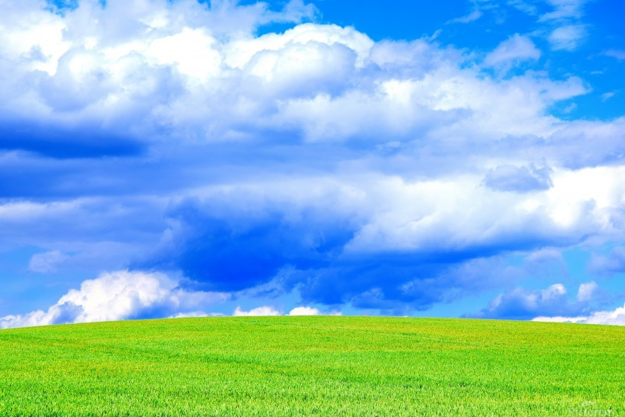 Blue Sky Clouds Field Bright Colorful Scenery Background   Print