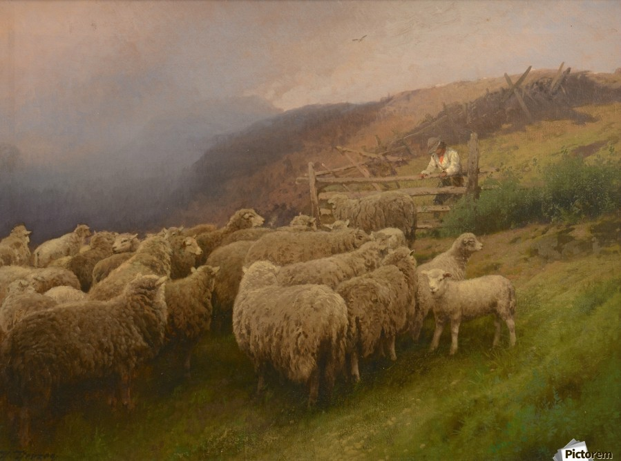 Landscape with sheep  Print