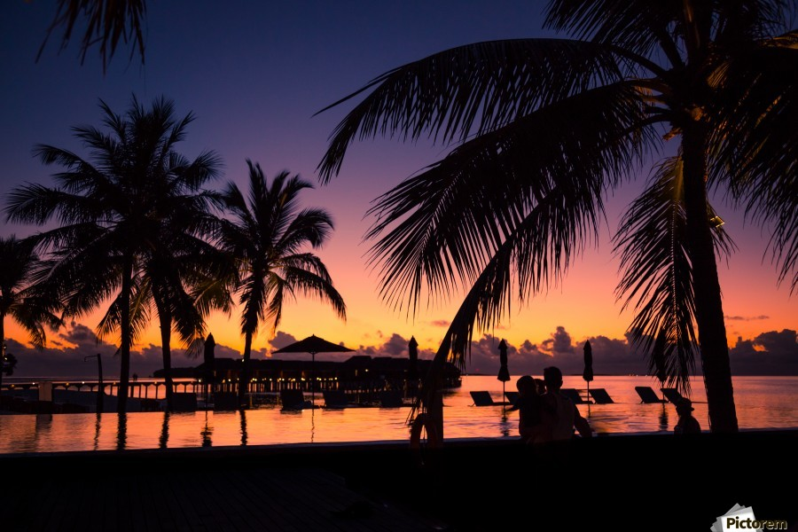 Silhouette coconut palm trees on beach at sunset. Vintage tone  Print