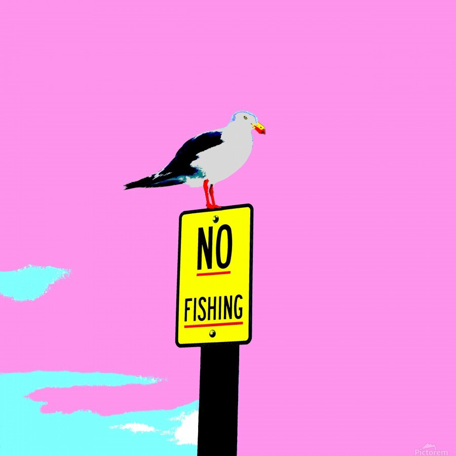 NO Fishing - Pink  Print