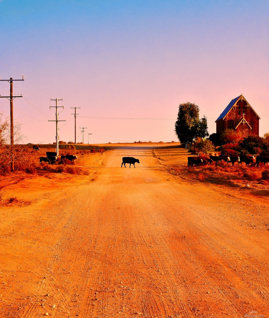 Quirky Sights of the Outback 1  Print
