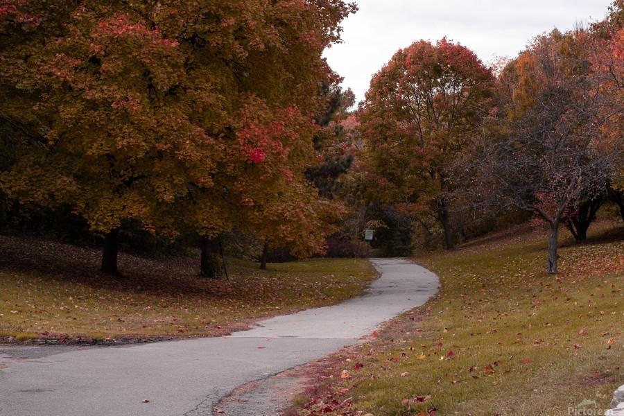 Autumn in the park  Print