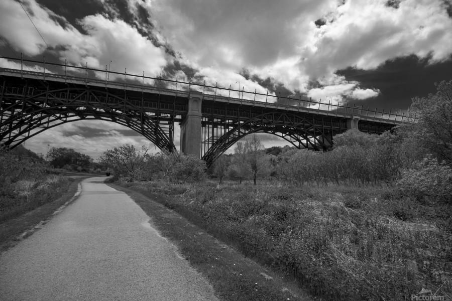 The bridge  Print
