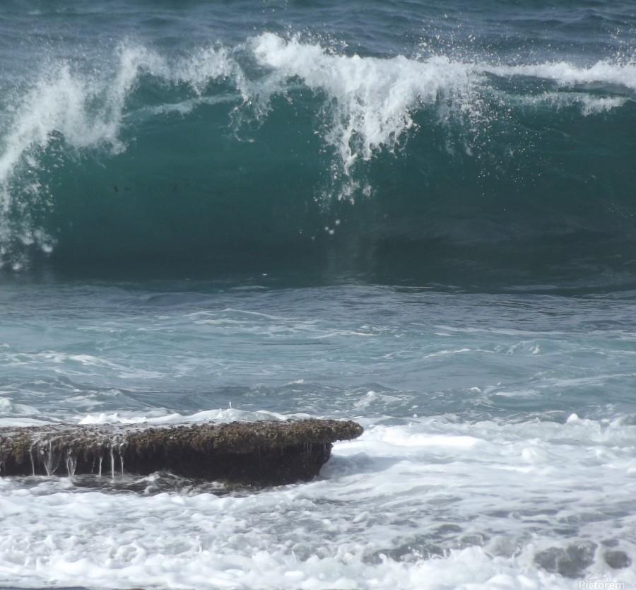 Breaking Wave  Print