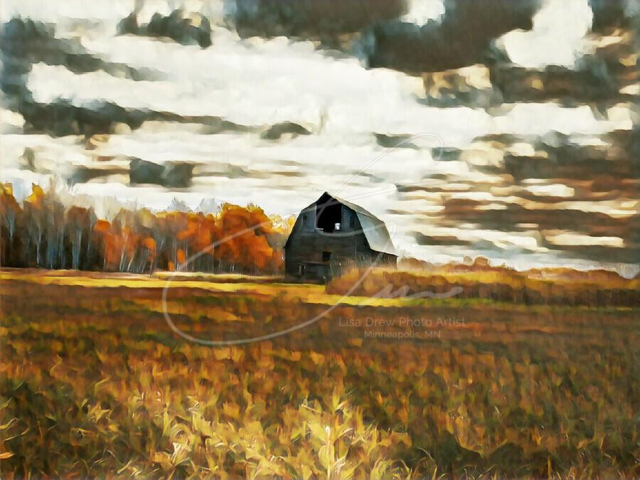 barn um lisadrewphotos  Print