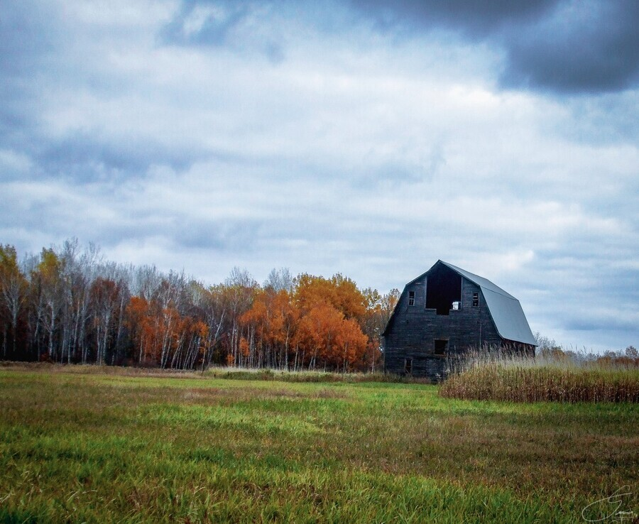autumn barn  Print