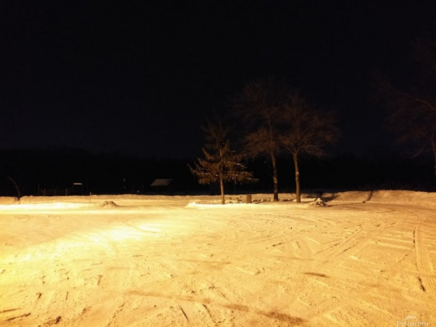 winter night  Print