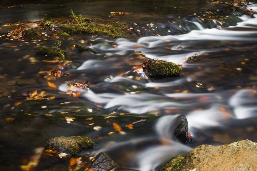 River Flow in Smokey Mountains  Print