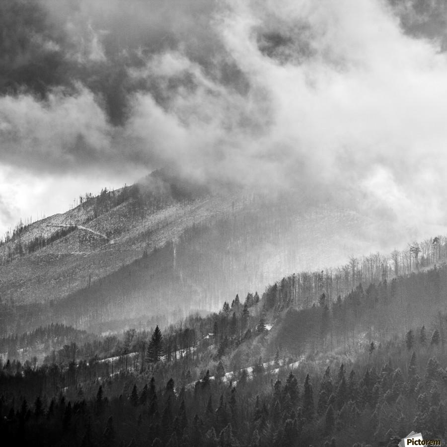 Winter Landscape V  Print