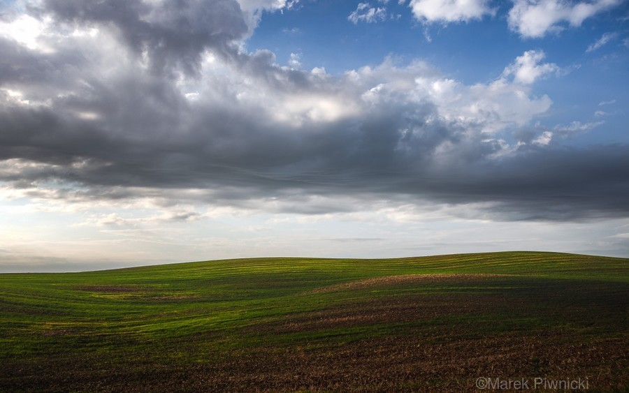 Fields and clouds  Print