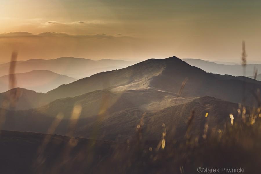 Yellow hills  Print