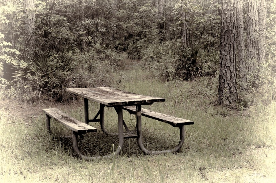 A_Lonely_Table  Print