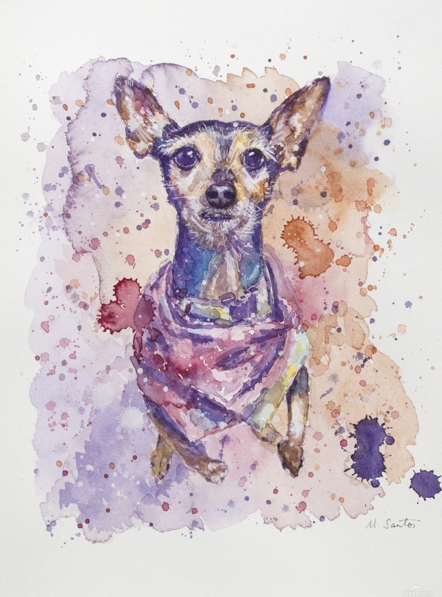 Chihuahua - Portrait of Gigi  Print