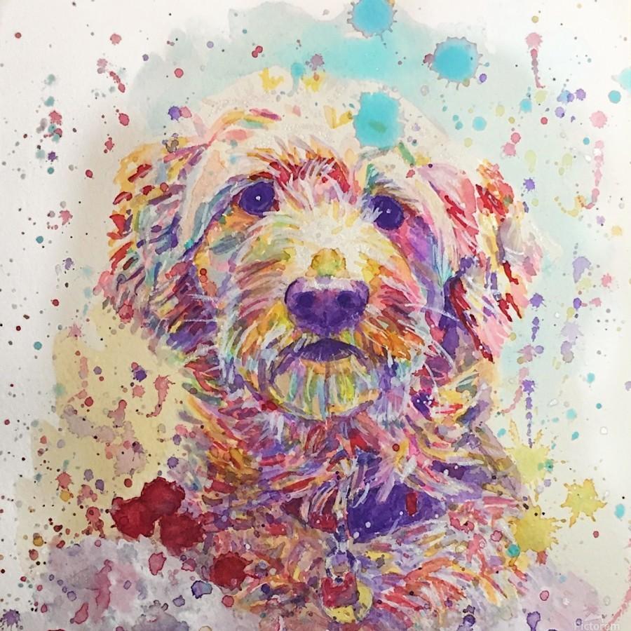 Goldendoodle - Portrait of Link  Print