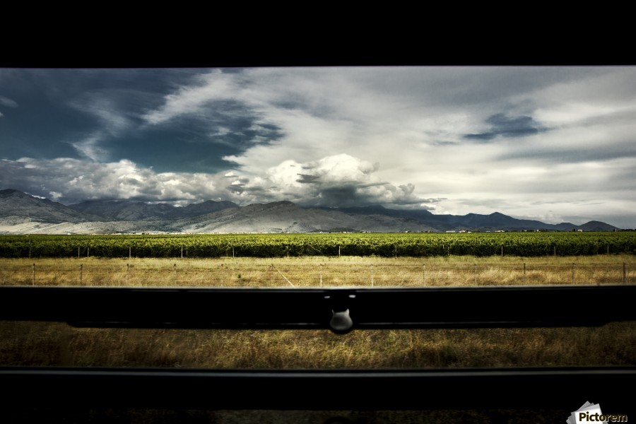 Back home , Marko Radovanovic , train, travel, motion, vine, vineyard, trough_window, speed, trip, out_of_home, nostalgia, old, wagon, mountain, planes, dry, summer, clouds, nature, wild,