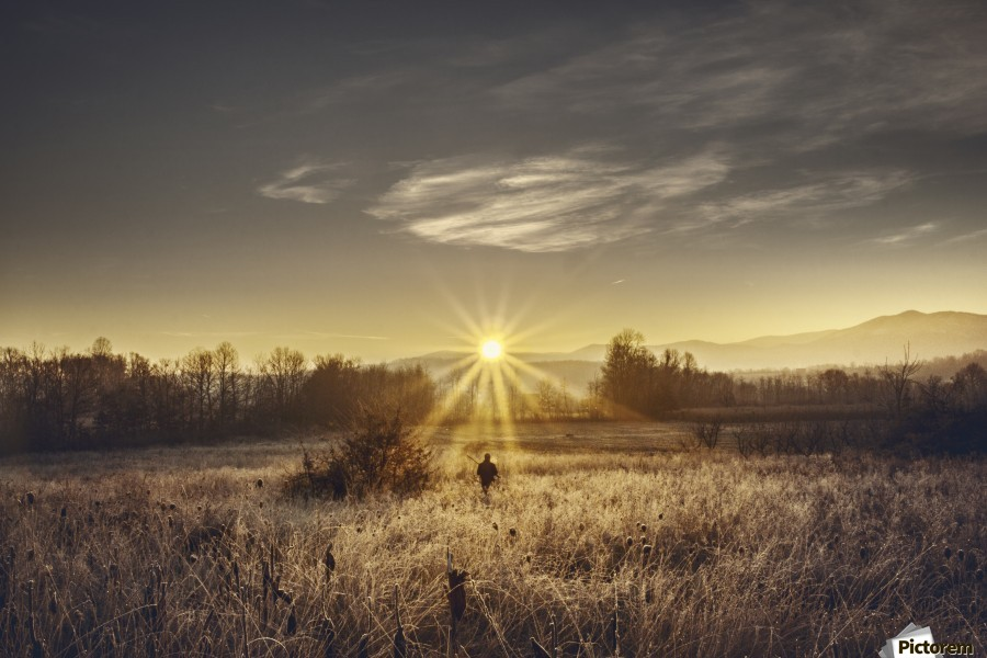 Zen morning , Marko Radovanovic , hunting, morning, sun_rays, sunrise, one, central, hot, grass, high, man, hunter, field, serbia,  moody, gun, hunt, quiet, expectation, waiting, pheasant_hunting, forest_line, serbia,