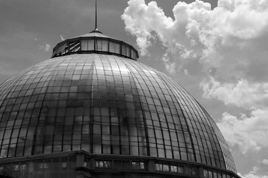 Belle Isle Conservatory Dome BW  Print