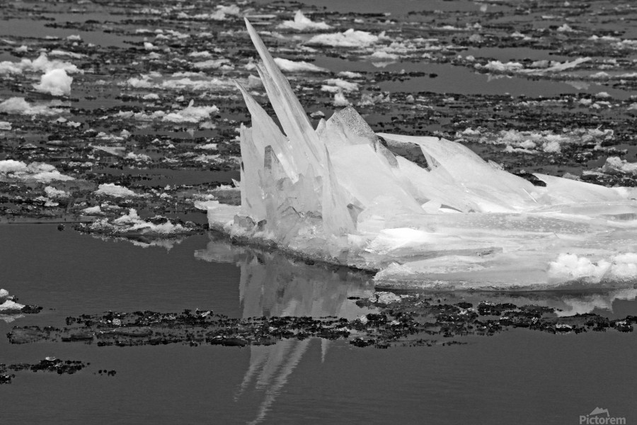 Jagged Ice on the River BW 021619  Print