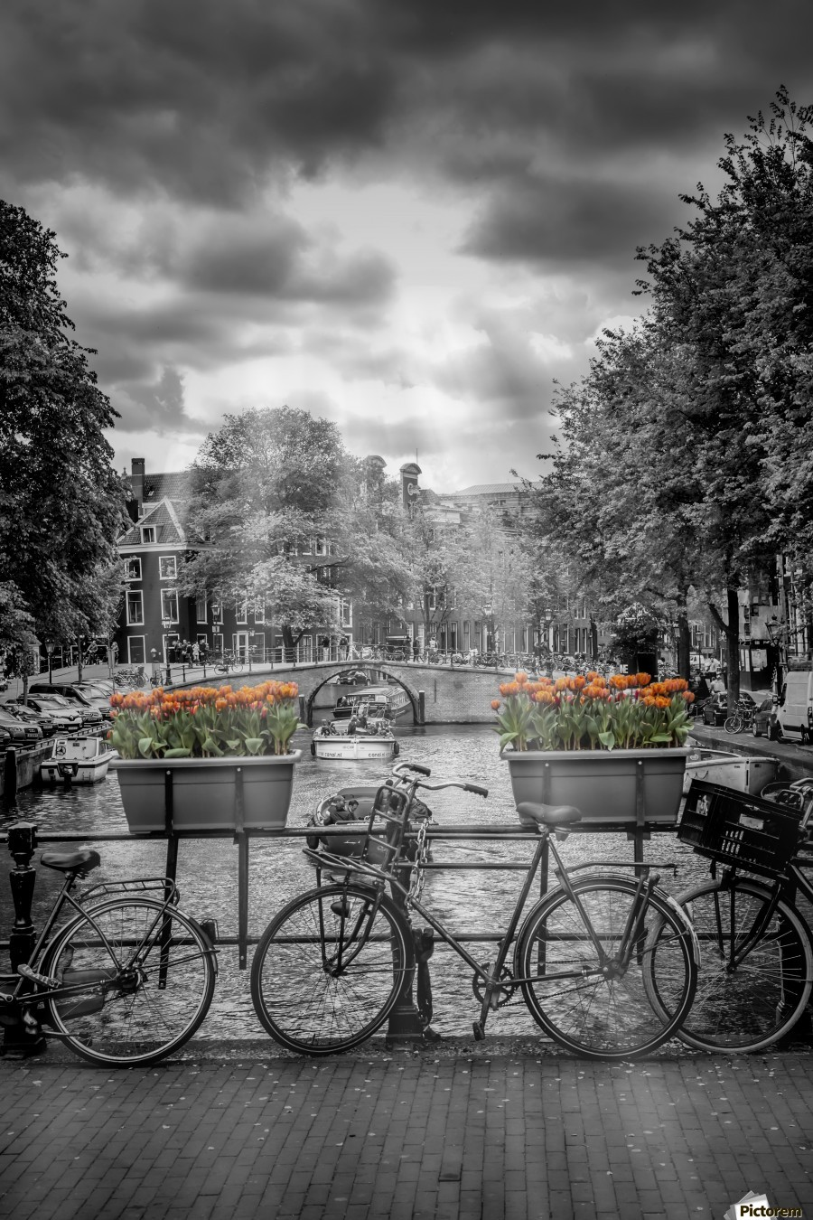 Gentlemens Canal AMSTERDAM , Melanie Viola , amsterdam, architecture, attraction, bicycle, bike, black, black-white, bridge, building, city, clouds, cloudy, colorkey, colourkey, dutch, europe, famous, gentlemens, canal, herengracht, historic, house, landmark, netherlands, old,  town, popular, rays, river, shore, shoreline, sight, sightseeing, sky, sun, sunlight, the, tulip, upright, urban, vertical, vignette, water, waterside, white,