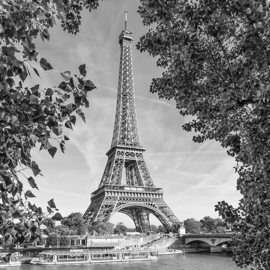 PARIS Eiffel Tower & River Seine   Monochrome  Print