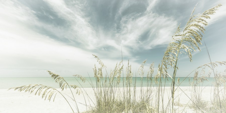 Heavenly calmness on the beach | Panoramic Vintage  Print