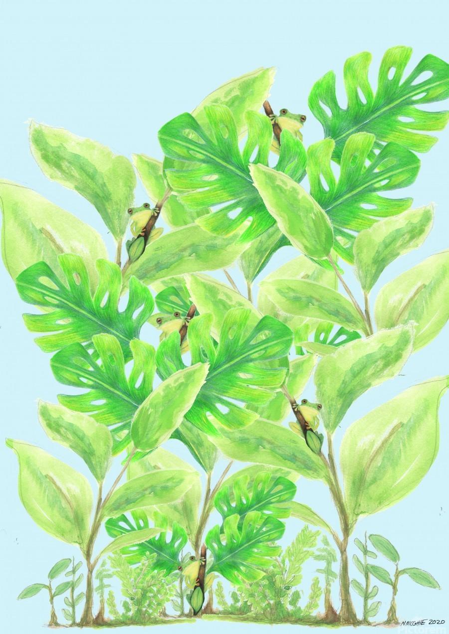 Frog Garden   Print