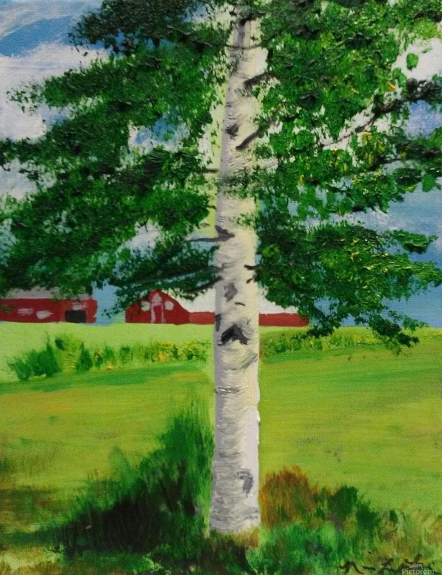 Kuopio Farmhouse  Print