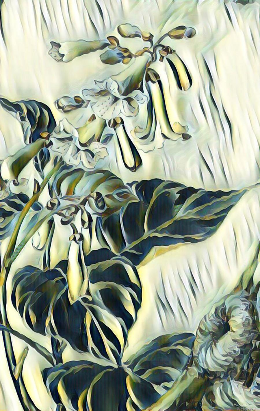 Flower_Lily  Print