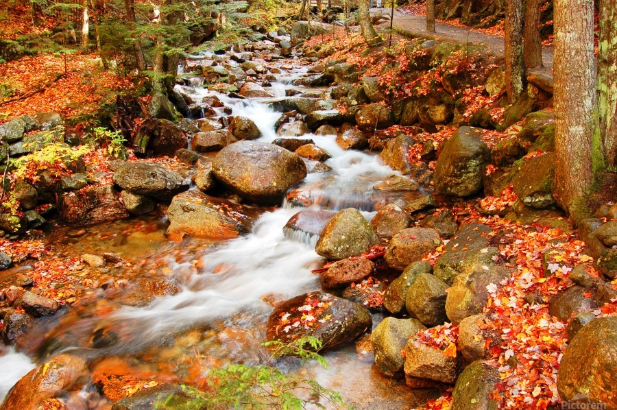 New England autumn stream  Print